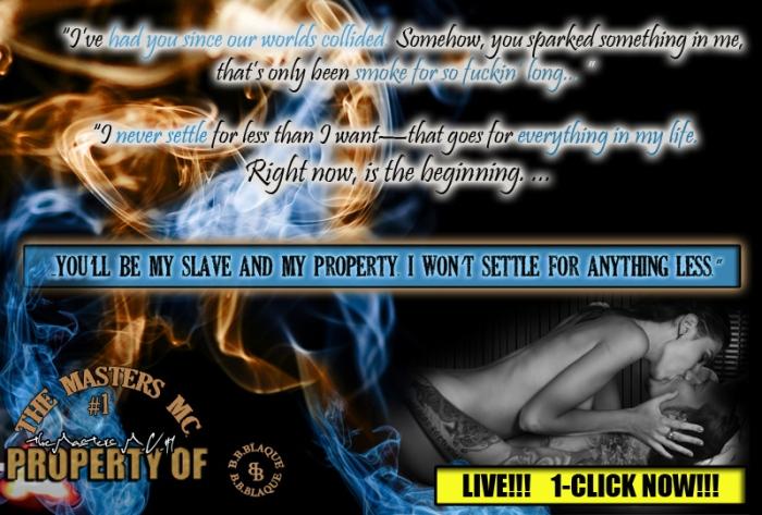 10_c_Media_teaser_slave_property